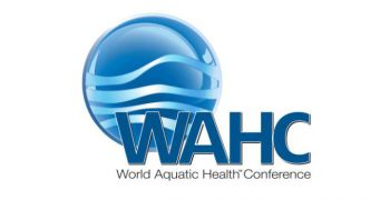 World Aquatic Health Conference comes to Williamsburg in October 2019